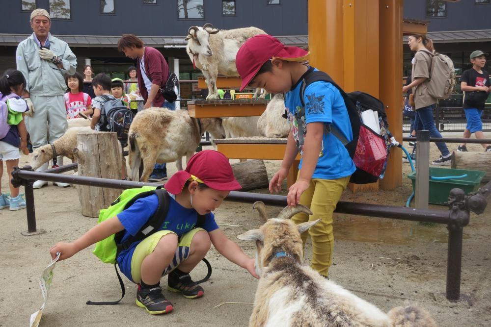 幼児組遠足 ~八木山動物園~ その2