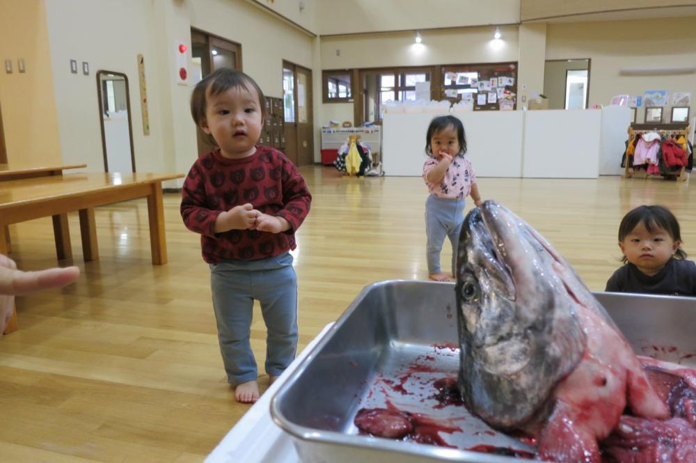 鮭のちゃんちゃん焼