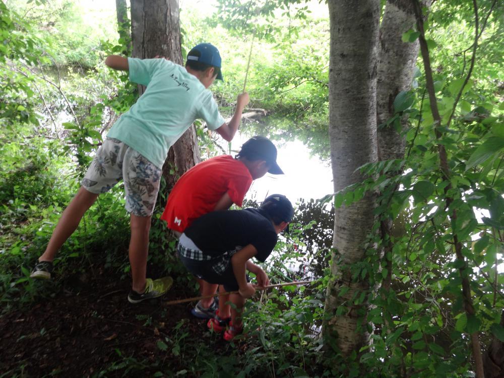 【夏の白川サマーキャンプ】:画像