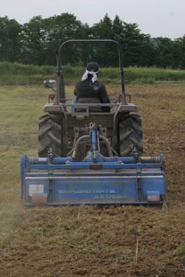 秘伝枝豆畑の耕耘
