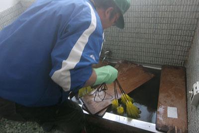 米づくり 2011 温湯消毒