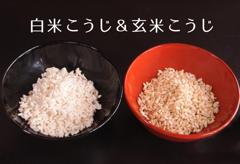 玄米麹 限定販売!