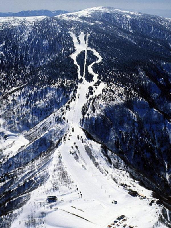 天元台スキー場 情報