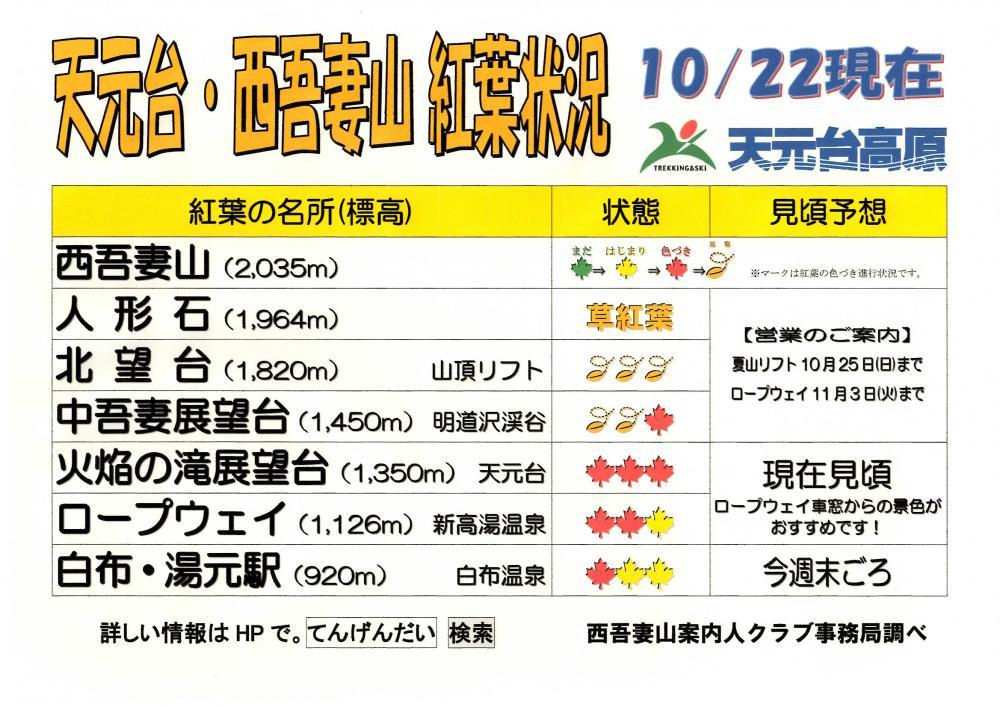 天元台・西吾妻山 紅葉情報(10/22現在)
