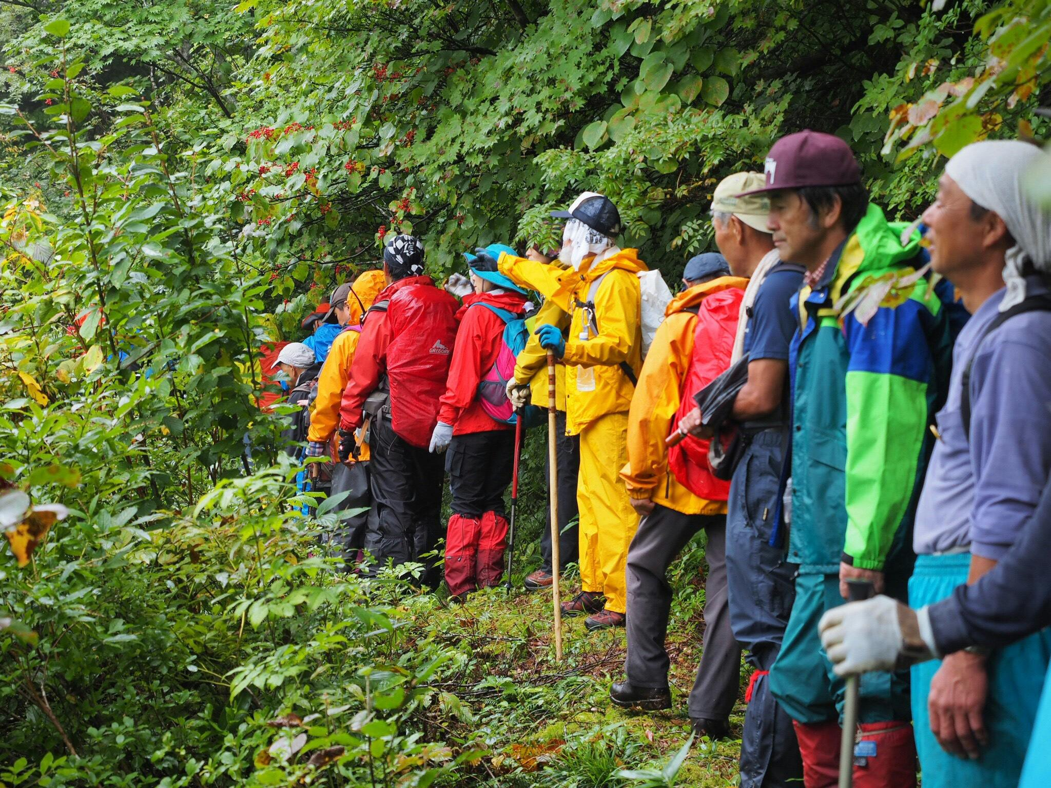 『新緑と残雪の葉山民衆登山』参加者を募集します。