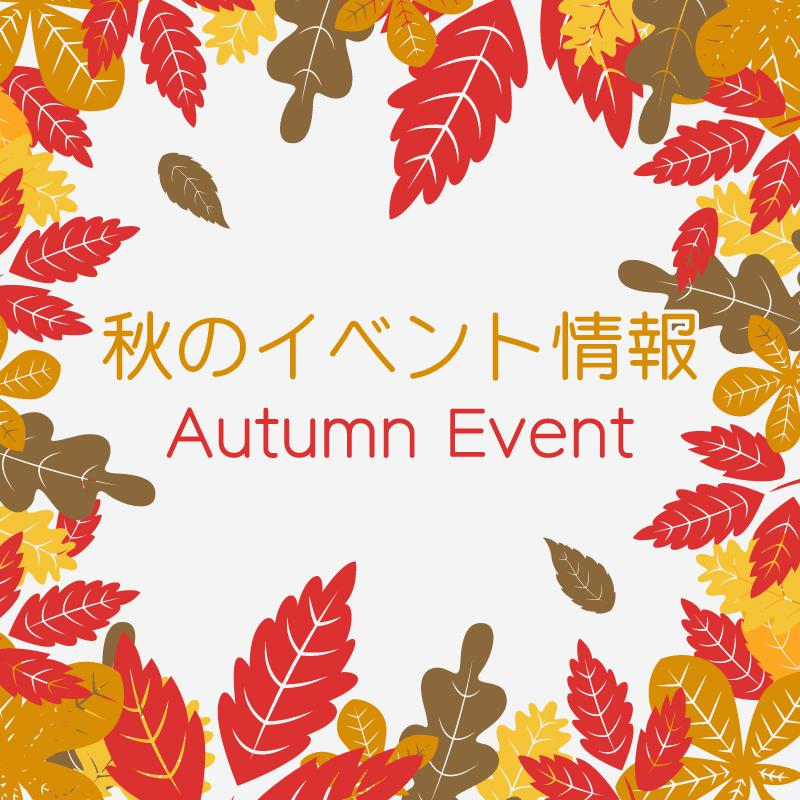 ●City Events information ●: Image
