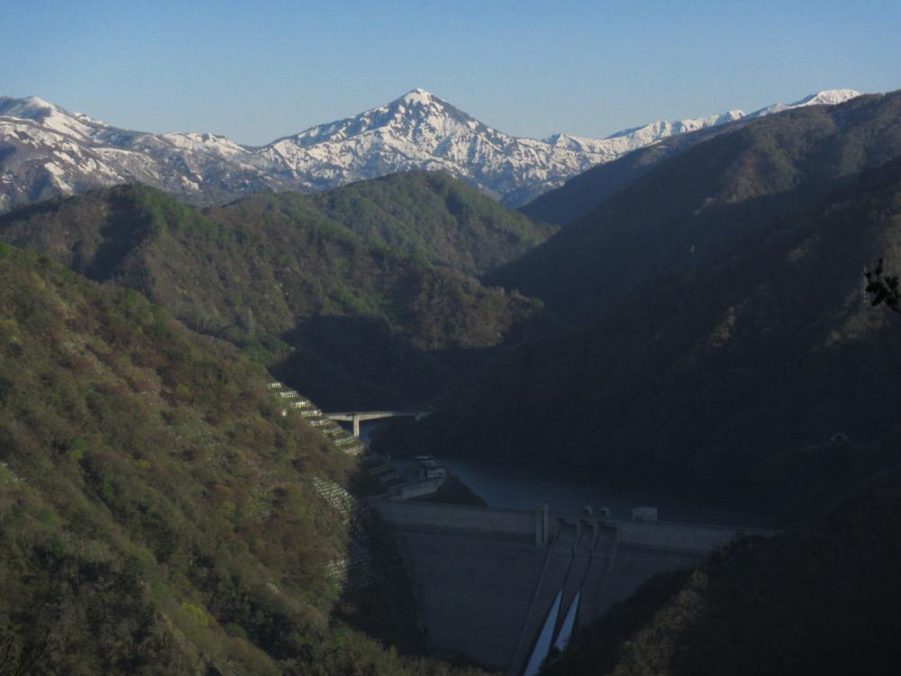 【長井ヤマノ☆ススメ】葉山・熊野山の状況
