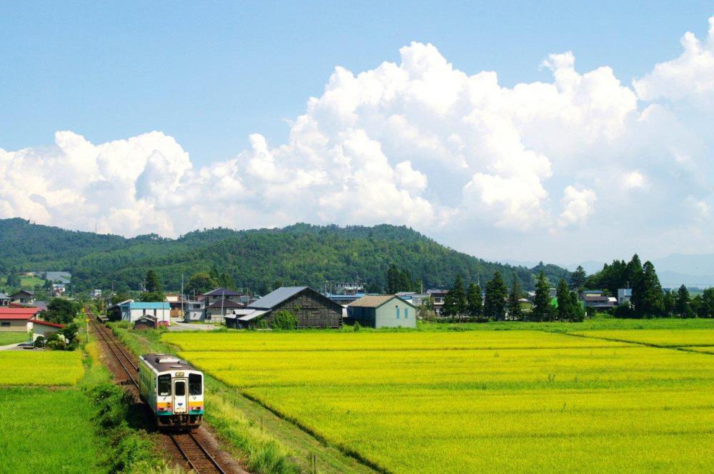 第1回フラワー長井線 オンライン乗車ツアー 開催のお知らせ:画像