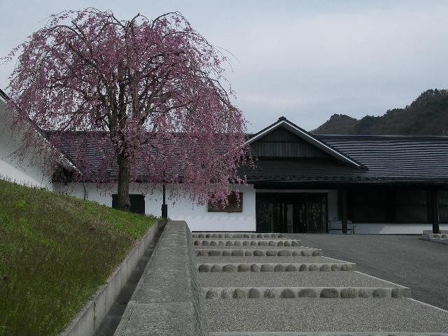 後藤美術館の枝垂れ桜