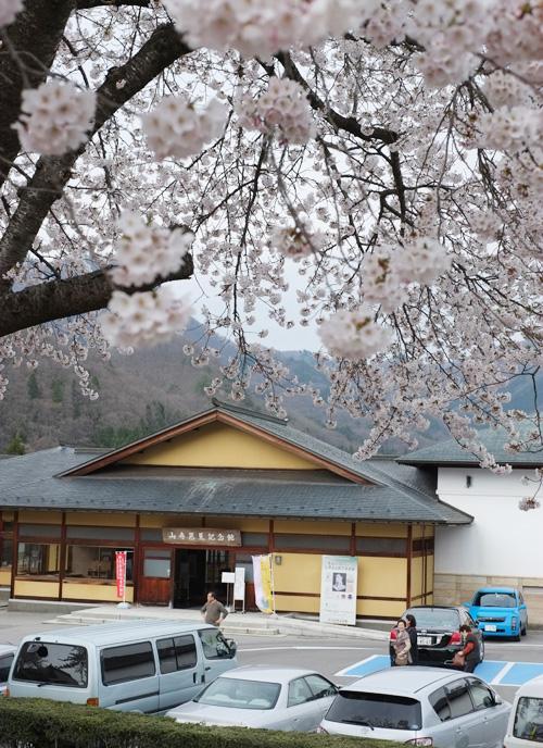 山寺芭蕉記念館と桜