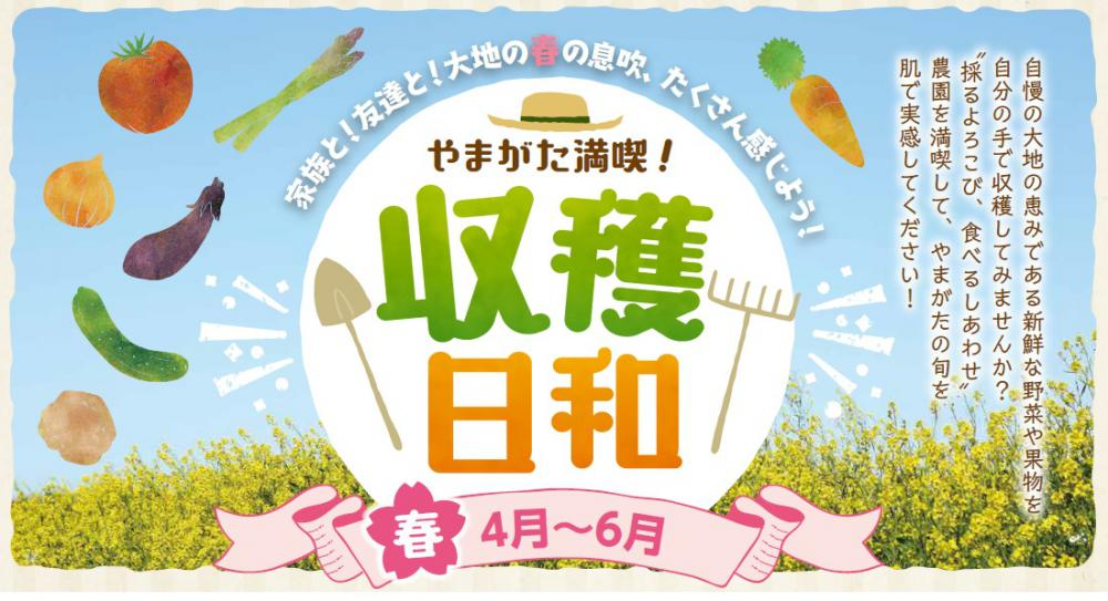 やまがた満喫!収穫日和【春】開始のお知らせ:画像