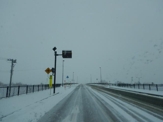 2月8日(金)雪 低温さむい