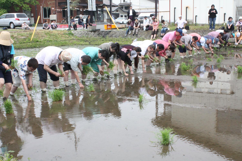 第12回 米鶴酒造田植え祭り 報告レポート :画像