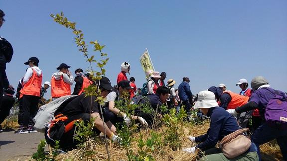 千年希望の丘 植樹祭