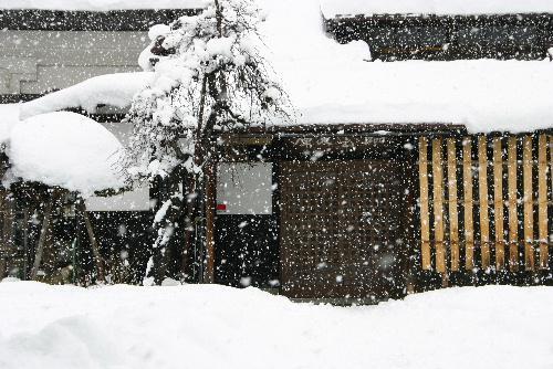赤湯にも本格的な雪 寒さに負けず幼稚園児がお茶をたしなむ