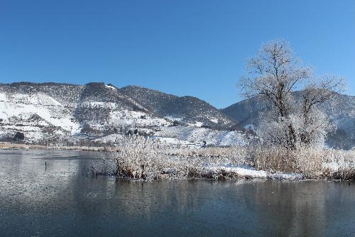 真っ青な空と真っ白な霧氷 真冬? 早春?