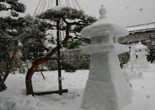 今日は一転おっきな雪 5センチぐらいはあるかも