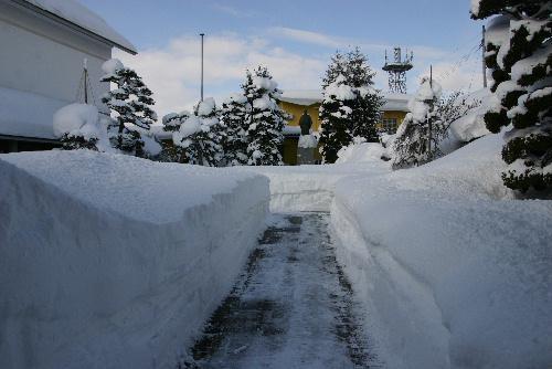 すごい雪です。臨雲文庫がすっぽり雪に覆われました/