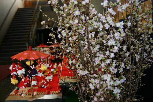 啓翁桜が7分咲き 記念館雛人形展会場に春の訪れ