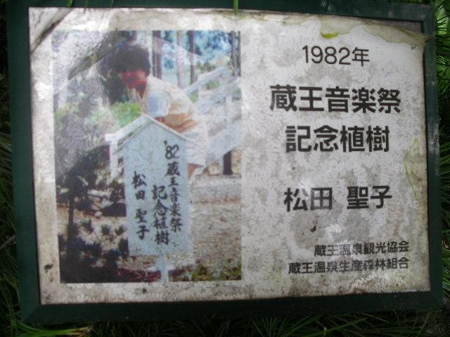 1982年【蔵王音楽祭記念植樹】松田聖子